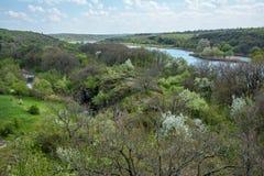 Anomalie méridionale de fleuve photos libres de droits