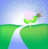 Anomalie sur la fleur Image libre de droits