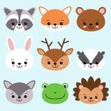 Anomals lindos zorro, mapache, oso, conejito, ciervo, tejón, lobo, rana, erizo de la historieta stock de ilustración