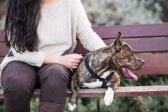 Anonieme vrouw met een hond Stock Fotografie