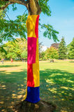 Anonymous art to give color to our grey cities. A tree in a park is dressed with knitted colorful wool. Knitting street art, called yarn bombing or yarn-storm royalty free stock photos