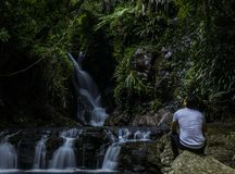 Anonymous man looking at waterfall stock image