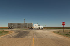 Anonymous Speeding Truck in Texas South Plains Royalty Free Stock Photography