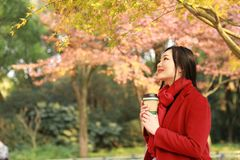 Anonymous woman enjoying takeaway coffee cup on sunny cold fall day sit under tree. Autumn concept, anonymous woman enjoying takeaway coffee cup on sunny cold stock image