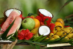 Anordnung der tropischen Früchte und der Blumen lizenzfreies stockbild