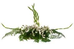Anordnung der weißen Blumen Stockbild
