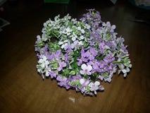 Anordnung der wilden Blumen Lizenzfreies Stockfoto