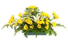 Anordnung des gelben Gänseblümchens und der weißen Blumen Lizenzfreies Stockfoto