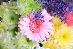 Anordnung für die Blumen, die auf einer rosa Blume zentrieren Lizenzfreies Stockbild