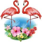 Anordnung von den Blumen und von den Flamingos stock abbildung