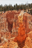 Anordnungen des sedimentären Felsens im bryce Schluchtpark stockfoto
