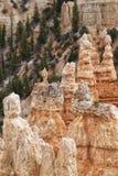 Anordnungen des sedimentären Felsens im bryce Schluchtpark lizenzfreie stockbilder
