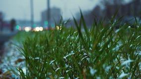 Anormales Wetter ist Nassschnee über der städtischen Landstraße stock video