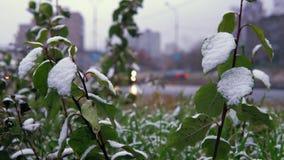 Anormales Wetter ist Nassschnee über der städtischen Landstraße stock video footage