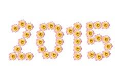 2015 anos novos Imagem de Stock