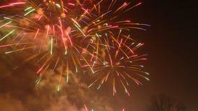 Anos novos dos fogos-de-artifício Fotos de Stock