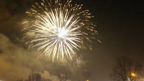 Anos novos dos fogos-de-artifício Fotografia de Stock Royalty Free