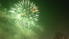 Anos novos dos fogos-de-artifício Imagem de Stock