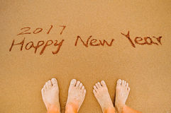 2017 anos novos felizes aos amantes Imagens de Stock