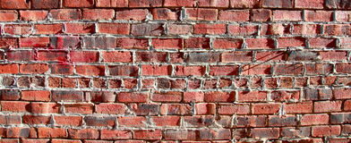 Another brick in the wall Stock Photography