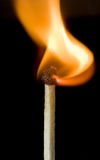 Another burning safety match Stock Photography