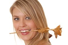 Yet Another Cliche. Lovely girl with a golden rose in her teeth Royalty Free Stock Images