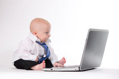 Another Day at the Office. Baby boy working on a laptop Royalty Free Stock Images