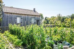 Another Garden at Upper Canada Village Stock Image