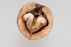 Another half of a walnut Stock Image