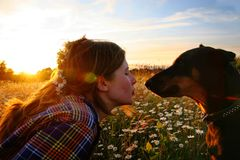 Another love. Portrait of the girl with her dog on the sundown stock photos