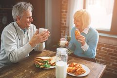 Another picture of nature old people sitting in the kitchen. THe. Y are drinking malk and talking to each other. They are enjoying company of one another royalty free stock image