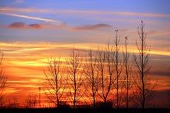 Another spectacular colorful Saskatchewan sunset. Spectacularly beautiful Saskatchewan fall sunset Stock Images