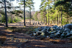 Another view of the nine stone circles of Hunn. Hunn is a sort of prehistoric park near Fredrikstad in Østfold county Stock Images