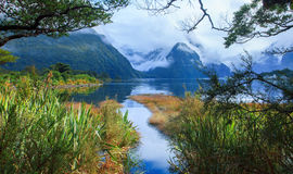 Another view point of milford sound in fjord land national park Royalty Free Stock Photos