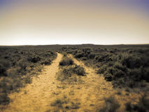 Another wagon trail leading to horizon Royalty Free Stock Photo