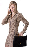 Another workday. Young active business woman busy on the phone Stock Photography