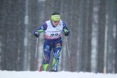 Anouk Faivre Picon - διαγώνιο να κάνει σκι χωρών Στοκ Εικόνα