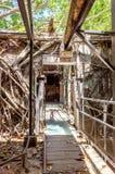 Anping-Baum-Haus Dieses alte Lager wird vorbei sich verzweigte von der alten Banyanbaumniederlassung bedeckt, die ist Lizenzfreies Stockfoto