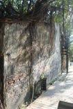 Anping domek na drzewie, Tajwan Zdjęcia Stock