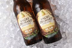 Free Anrgy Orchard Pear Hard Cider Royalty Free Stock Photography - 129396987