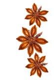 Anís de estrella entero Foto de archivo libre de regalías