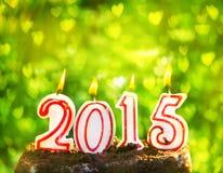 2015 ans sur l'herbe verte en été se garent Photographie stock