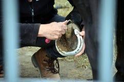Ansa hennes häst Fotografering för Bildbyråer