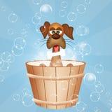 Ansa hundkapplöpning stock illustrationer