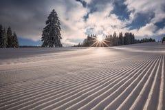 Ansad skidåkninglutning i den svarta skogen, Tyskland Arkivbilder