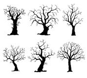 Ansammlung Baumschattenbilder Vektorbaum getrennt auf weißem Hintergrund Lizenzfreies Stockbild