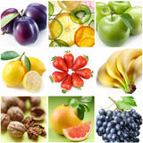 Ansammlung Bilder der Nahrung Stockbilder
