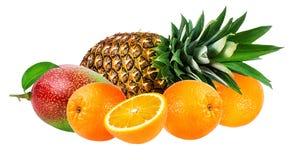 Ansammlung Früchte getrennt auf Weiß lizenzfreie stockfotografie