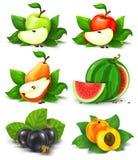 Ansammlung Früchte und Beeren mit grünen Blättern Stockfotos