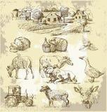 Ansammlung-handgemachte Zeichnung des Bauernhofes Lizenzfreies Stockbild